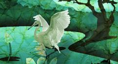 craneprev